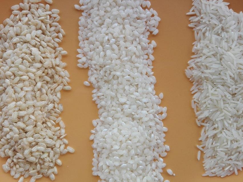 Tres variedades de arroz, de izquierda a derecha, integral, blanco y basmati.